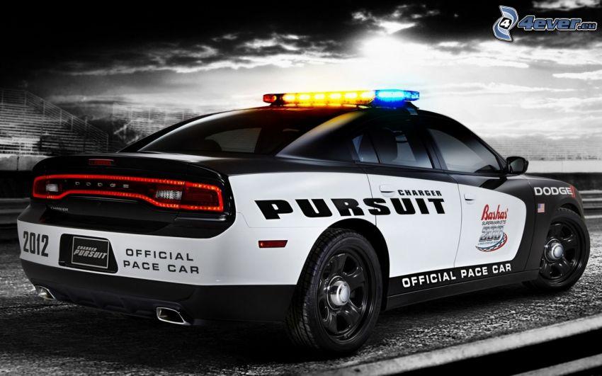 police car, Dodge