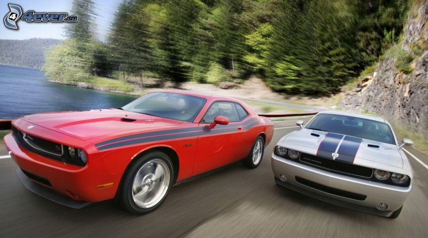 Dodge Challenger, race, speed