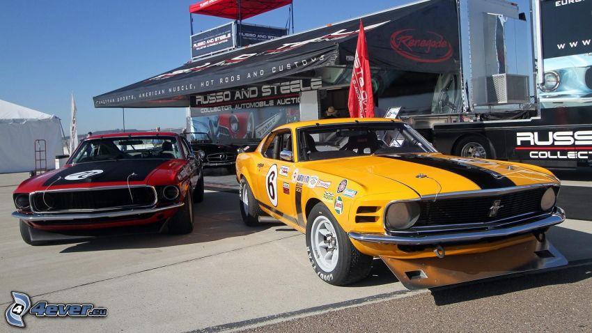 Ford Mustang, oldtimer, racing car