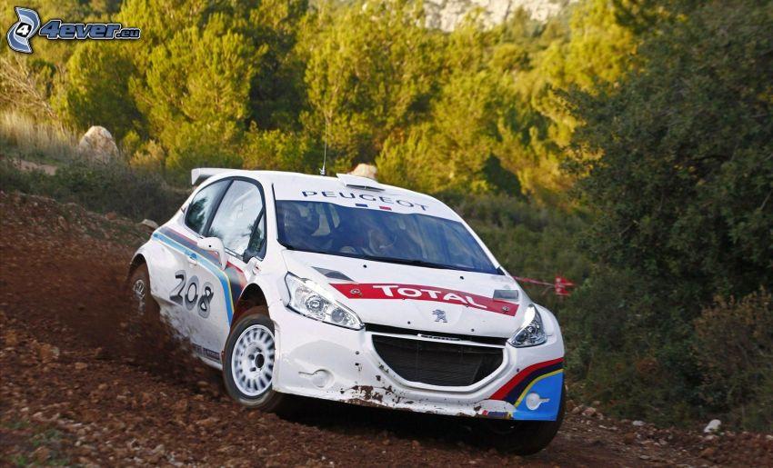 Peugeot 208 R5, drifting, racing car