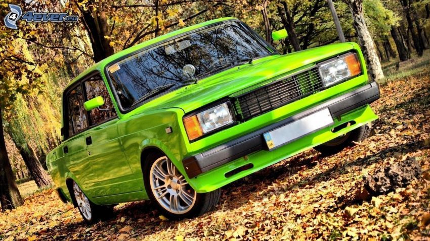 Lada, fallen leaves