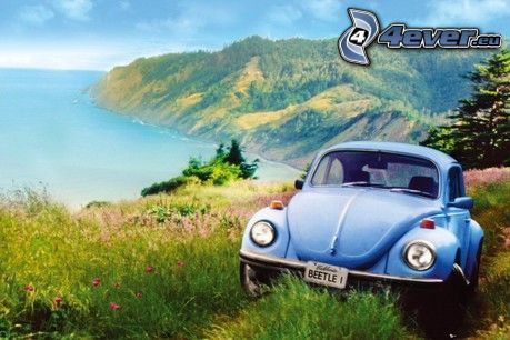 Volkswagen Beetle, forest road, the view of the sea