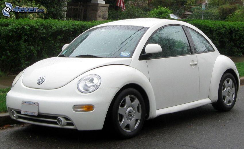 Volkswagen New Beetle, rain