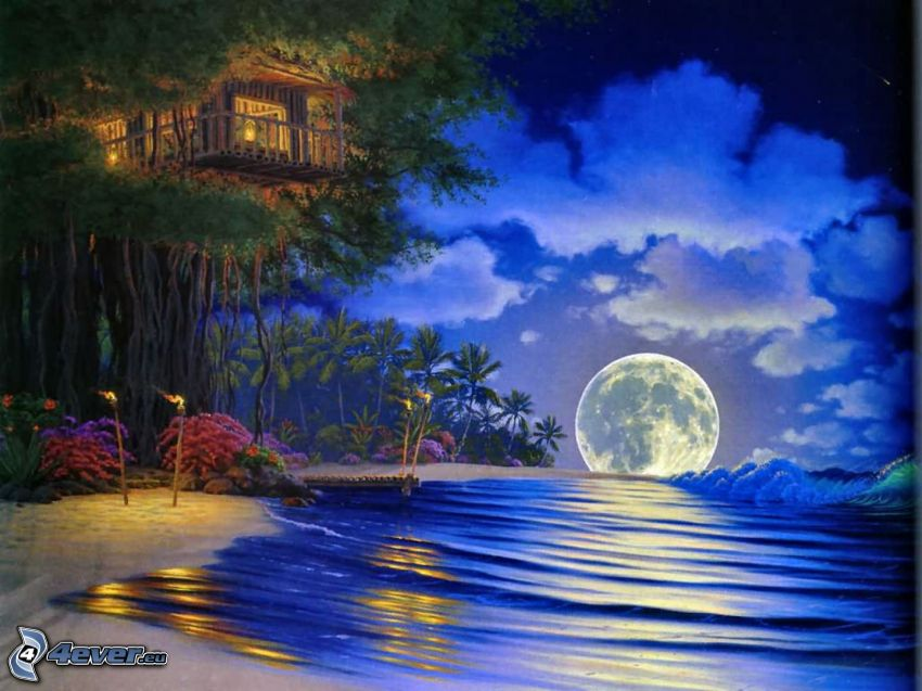 moon, sea, night, house on the tree