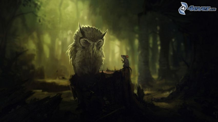 owl, mouse, forest