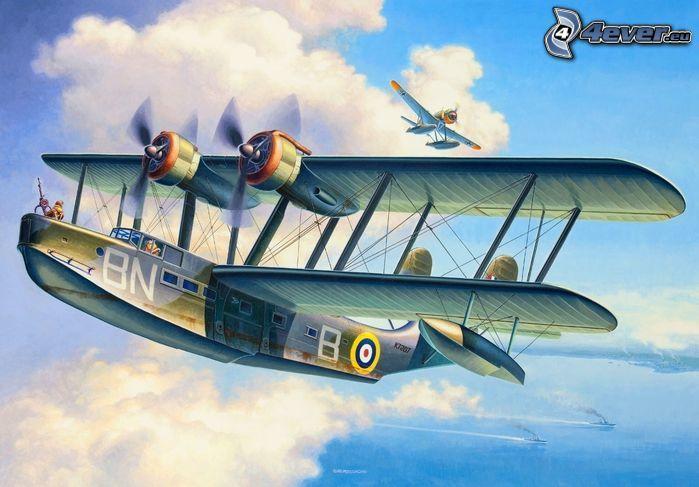biplane, aircraft