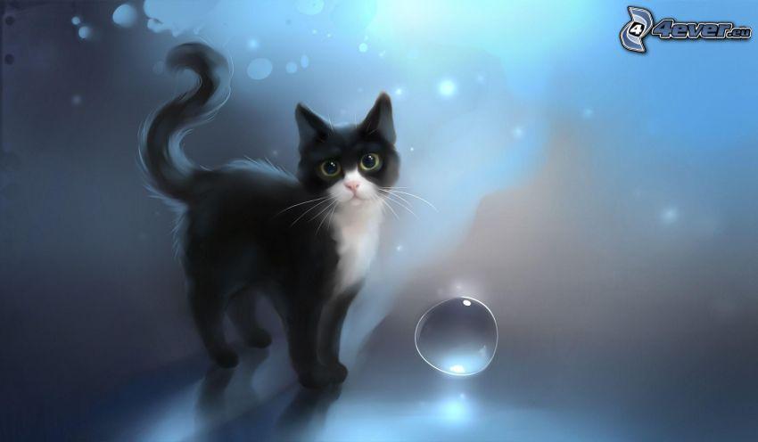 black kitten, bubble