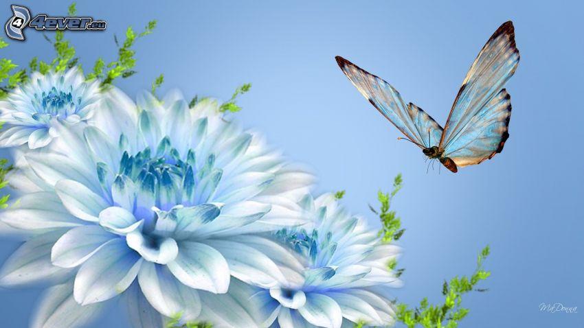 butterfly, blue flowers