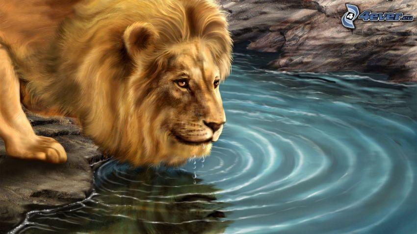 cartoon lion, water