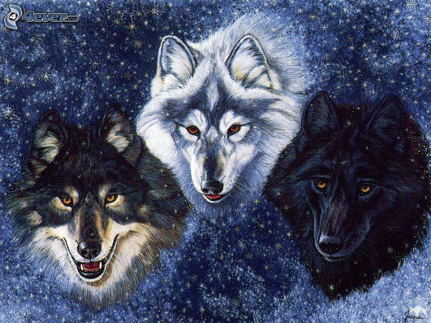 cartoon wolves, winter