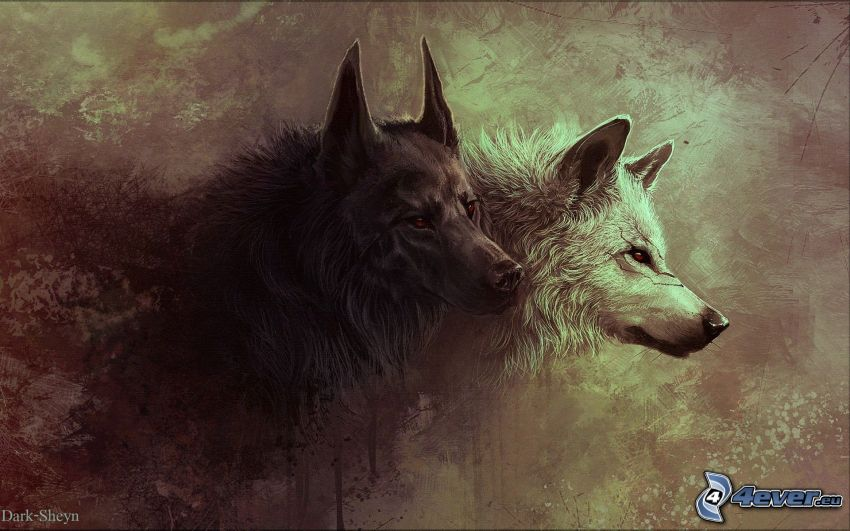 cartoon wolves