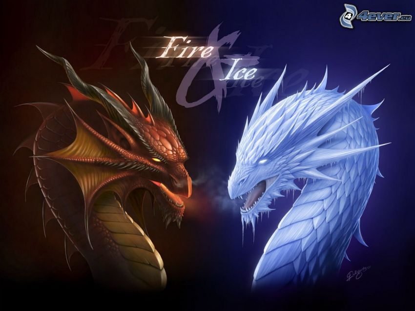 dragons, fire, ice, ice dragon