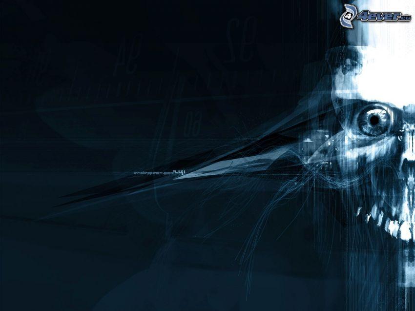 skull, lines