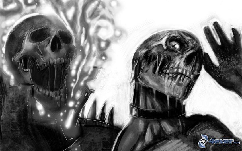 skulls, death