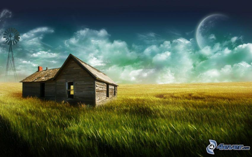 abandoned house, field