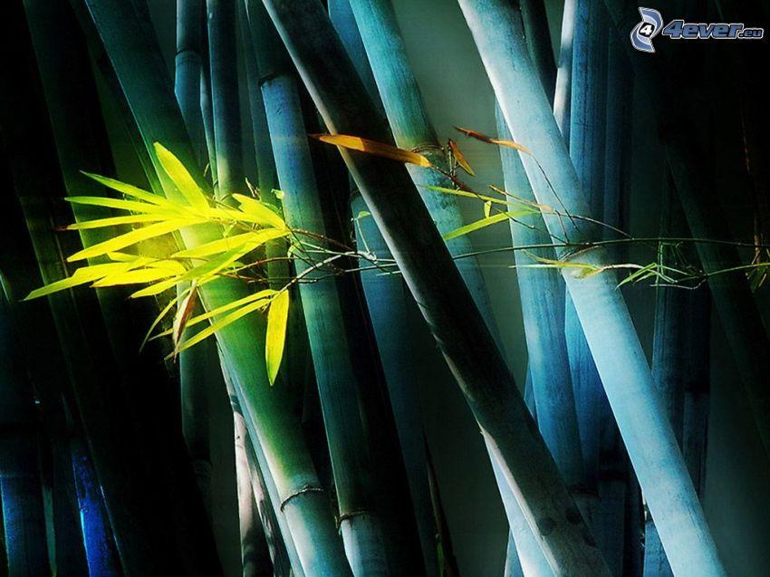 bamboo wood, yellow flower