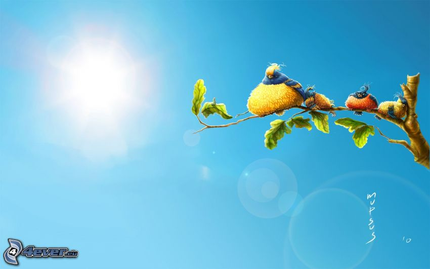 birds, branch, sun, cartoon tree