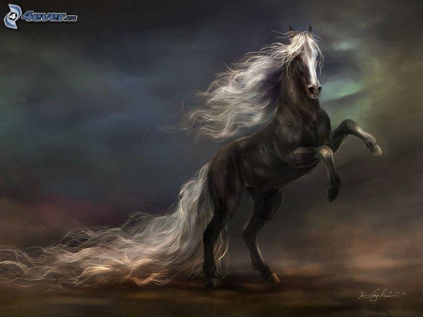 black horse, mane