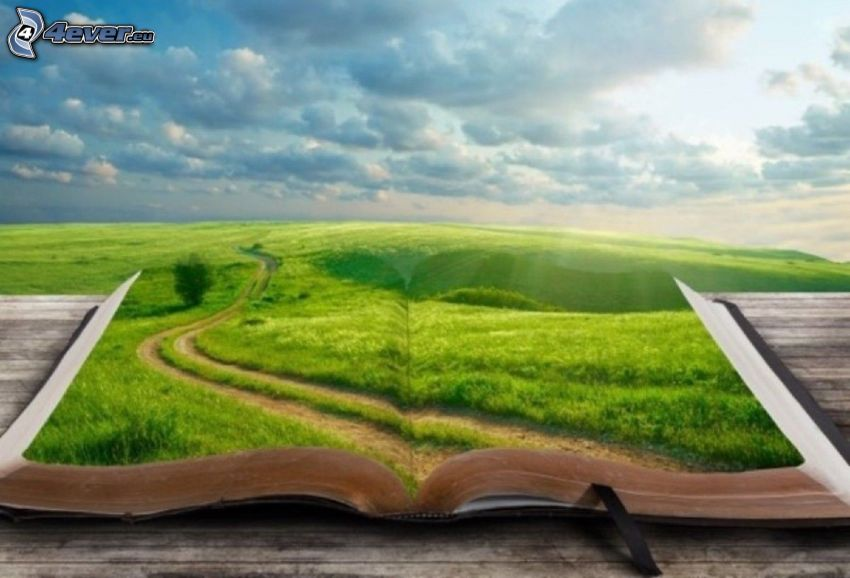 book, road, meadow, clouds