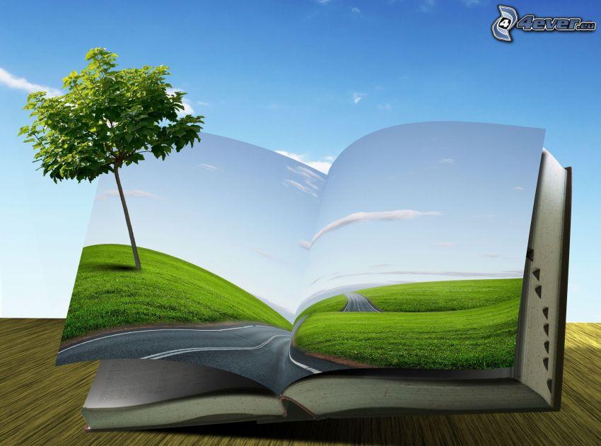 book, tree, road, grass, sky