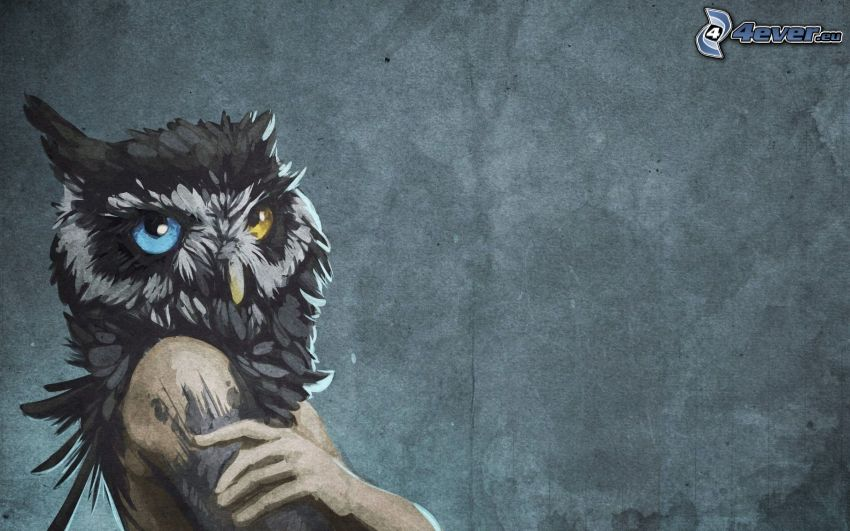 cartoon owl, head, the human body, colored eyes