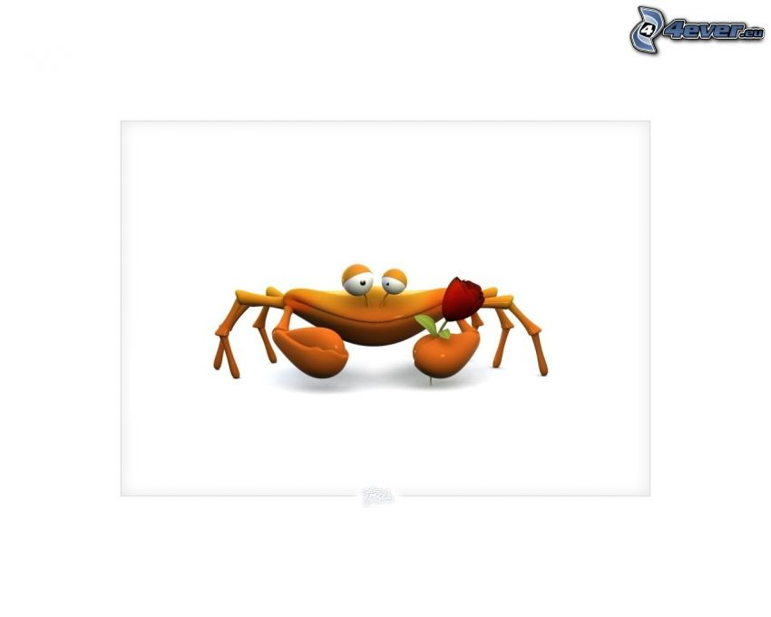 crab, rose