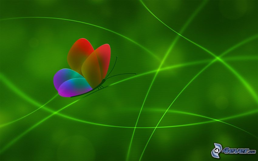 digital butterfly, green lines