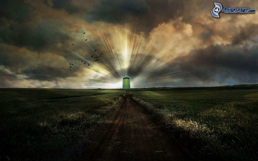 door, field, glow, field path
