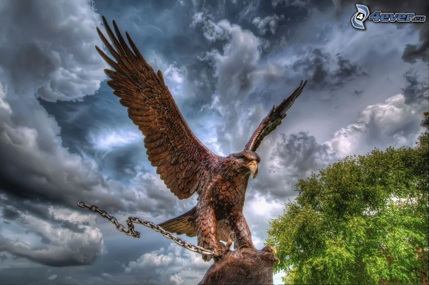 eagle, chain, dark clouds, tree, HDR
