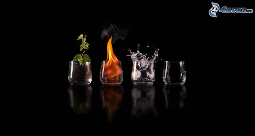 elements, soil, fire, water, air, glasses, plant, splash
