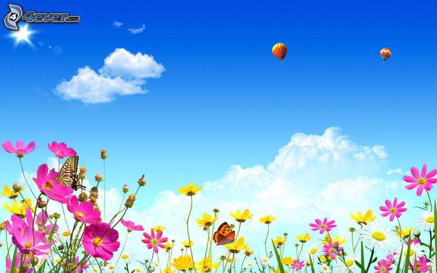 field flowers, butterflies, hot air balloons