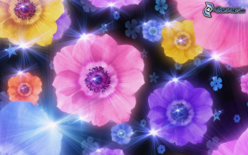 flowers, light