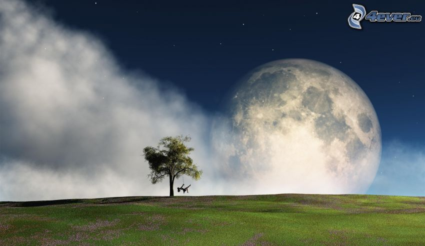 lonely tree, girl on a swing, moon, clouds, meadow, purple flowers