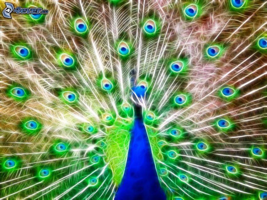 peacock, fractal animals
