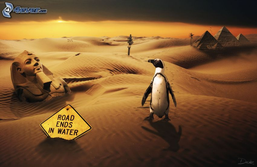 penguin, desert, Egypt, Sphinx