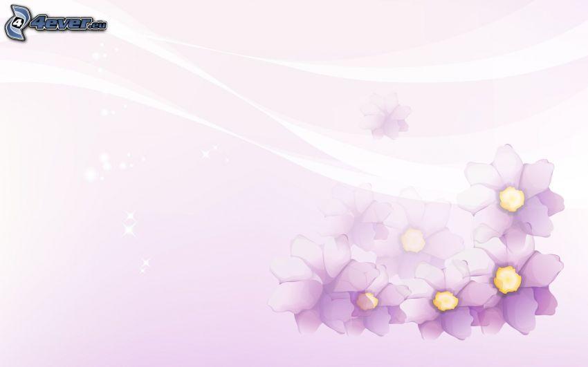 purple flowers, white background