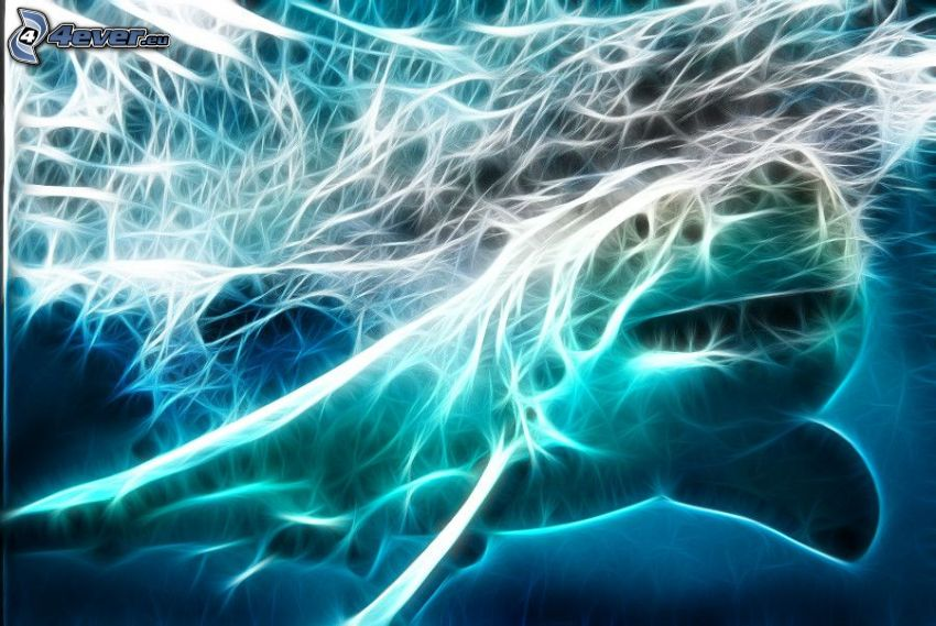 shark, fractal animals