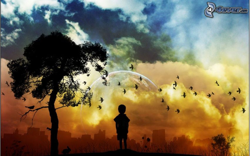 silhouette of a boy, silhouette of tree, flock of birds, clouds