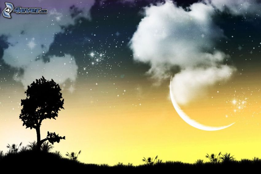 silhouette of tree, clouds, moon