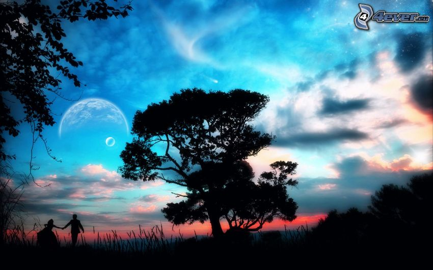 silhouette of tree, couple, sky