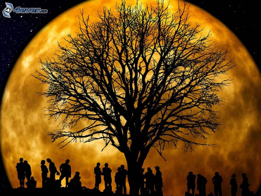 silhouettes of people, silhouette of tree, orange Moon