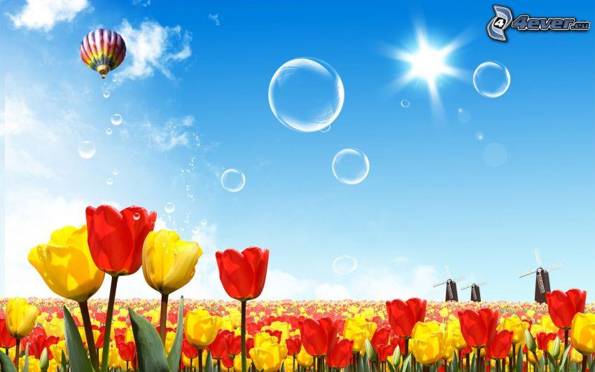 tulips, bubbles, hot air balloon, windmills