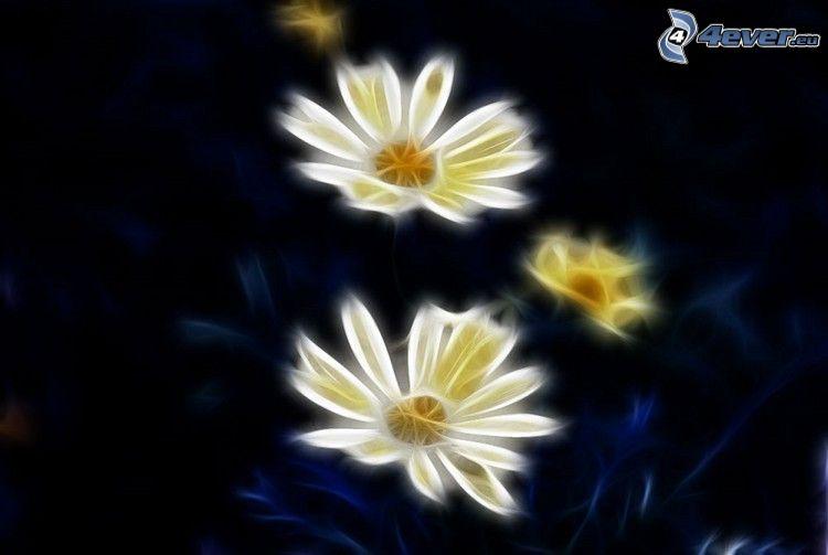 white flowers, fractal
