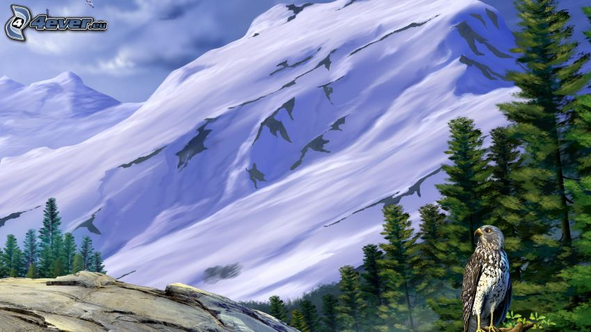 falcon, snowy mountains, coniferous trees