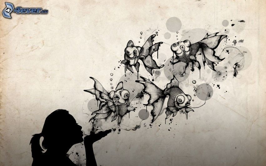 fishes, silhouette of a girl