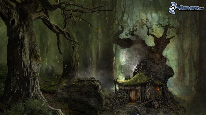 forest, house