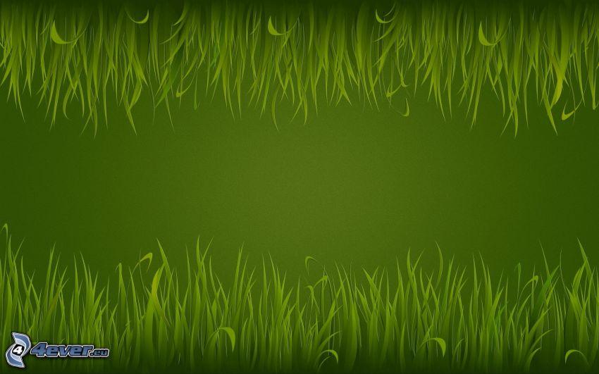 grass, green background