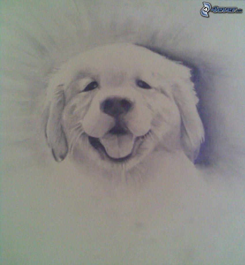 cartoon dog, puppy