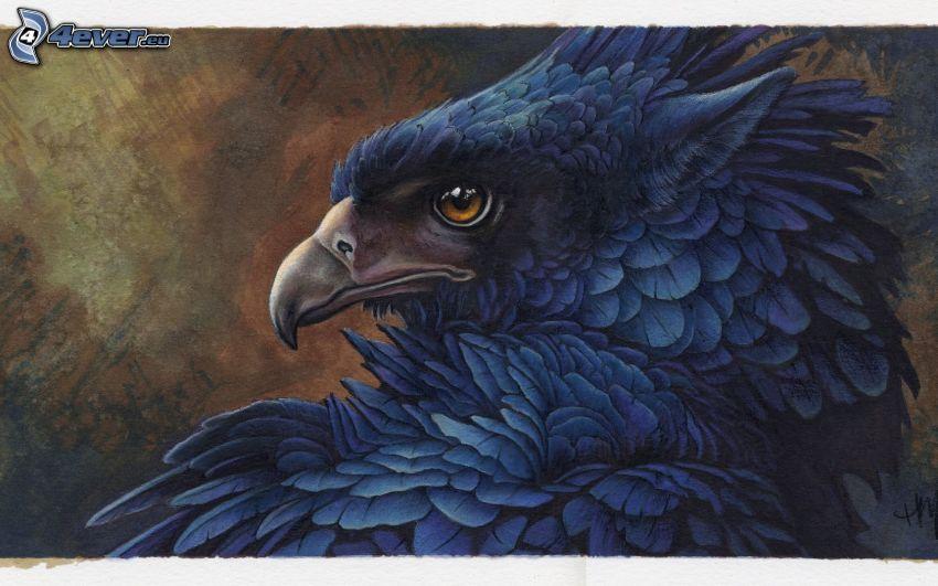 eagle, beak