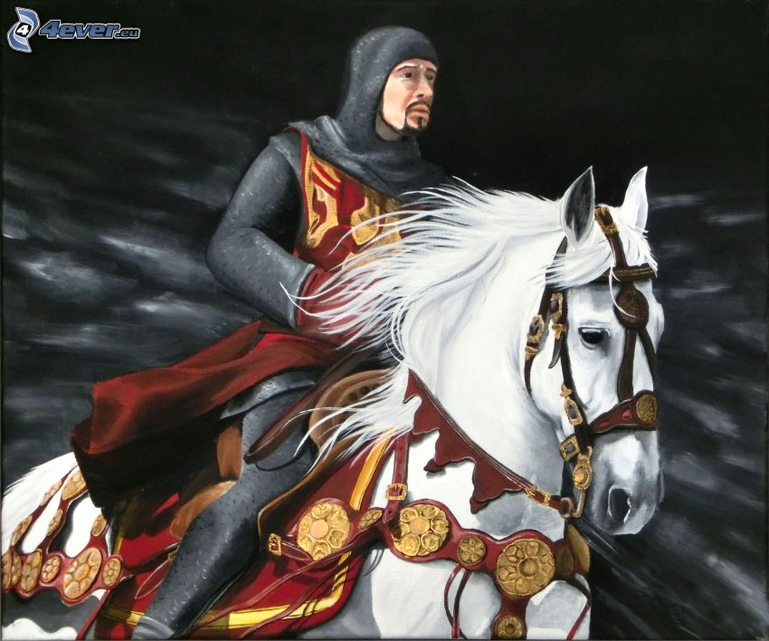 knight, white horse